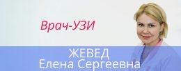 Жевед 1460Х580